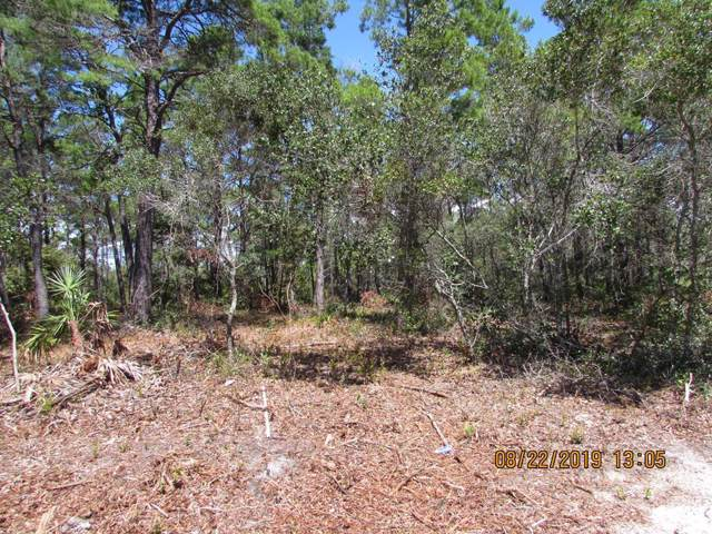 226 Woodill Rd, CARRABELLE, FL 32322 (MLS #301588) :: Coastal Realty Group