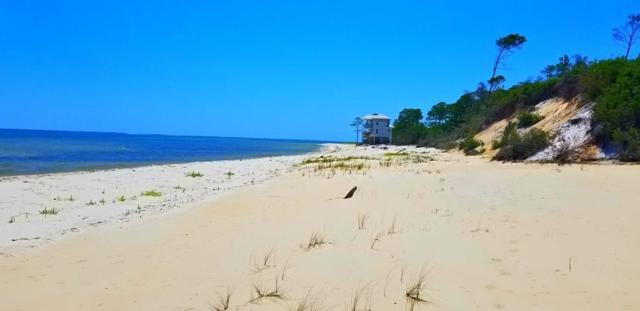 2774 Hidden Beaches Rd, CARRABELLE, FL 32322 (MLS #301769) :: Coastal Realty Group