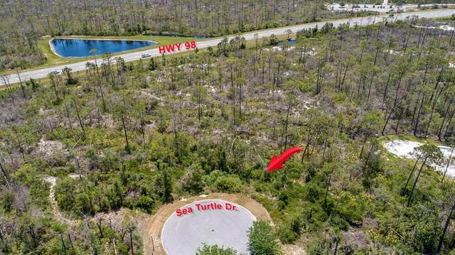 Lot 34 Sea Turtle Dr, PORT ST. JOE, FL 32456 (MLS #301844) :: The Naumann Group Real Estate, Coastal Office