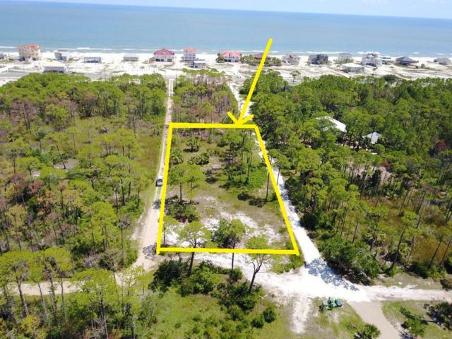 1377 E Gulf Beach Dr, ST. GEORGE ISLAND, FL 32328 (MLS #301977) :: Coastal Realty Group