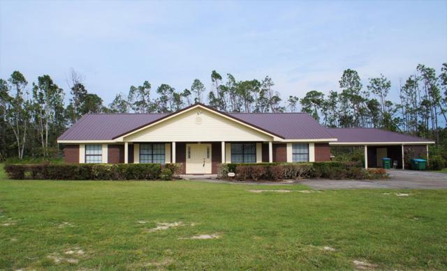 248 James Dr, WEWAHITCHKA, FL 32465 (MLS #302322) :: Coastal Realty Group