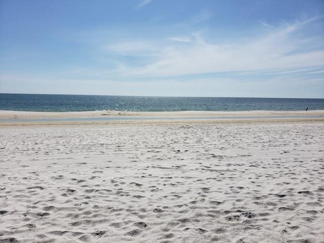 6125 Cape San Blas Rd, PORT ST. JOE, FL 32456 (MLS #302324) :: Coastal Realty Group