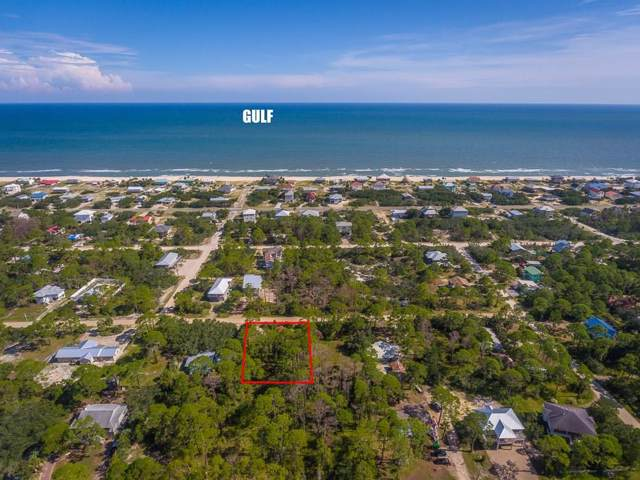 1017 W Bayshore Dr, ST. GEORGE ISLAND, FL 32328 (MLS #302759) :: Berkshire Hathaway HomeServices Beach Properties of Florida