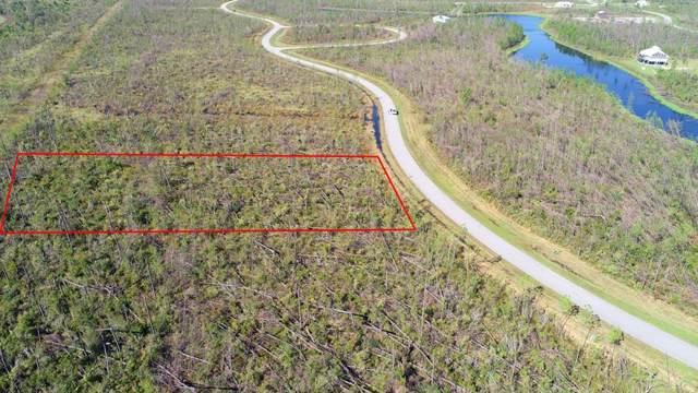 142 Ibis Dr., WEWAHITCHKA, FL 32465 (MLS #303020) :: Coastal Realty Group