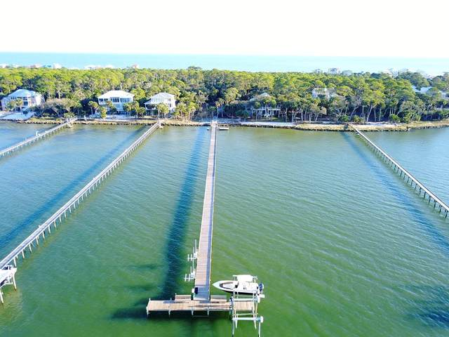2243 Coquina Dr, ST. GEORGE ISLAND, FL 32328 (MLS #303072) :: Anchor Realty Florida