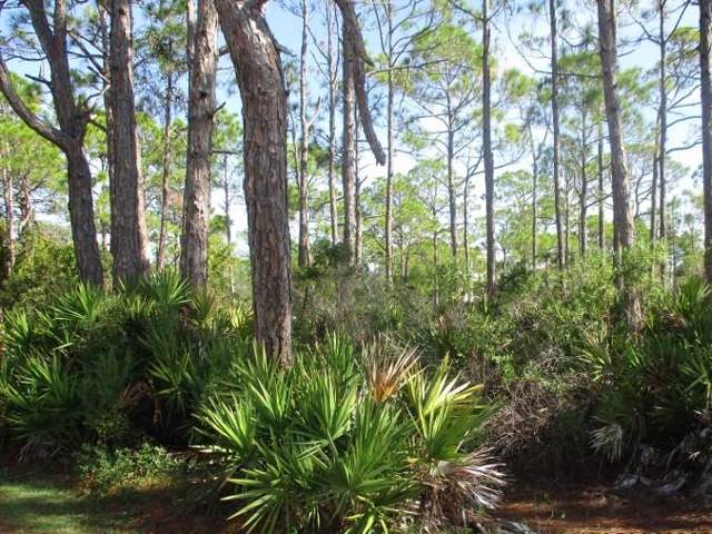 1660 Hawthorne Ln, ST. GEORGE ISLAND, FL 32328 (MLS #303420) :: Coastal Realty Group