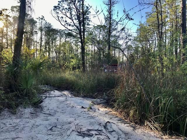 316 Nedley St, ST. GEORGE ISLAND, FL 32328 (MLS #303432) :: Coastal Realty Group