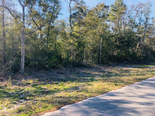 301 Nw 12Th St, CARRABELLE, FL 32322 (MLS #304070) :: The Naumann Group Real Estate, Coastal Office