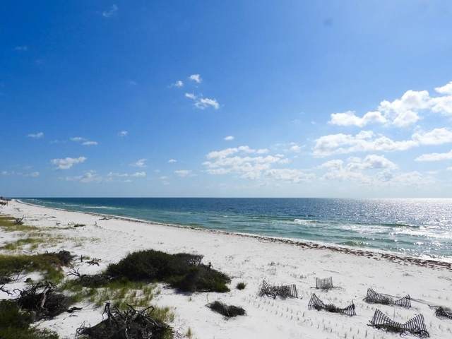 760 Gulf Shore Dr, CARRABELLE, FL 32322 (MLS #304761) :: Anchor Realty Florida