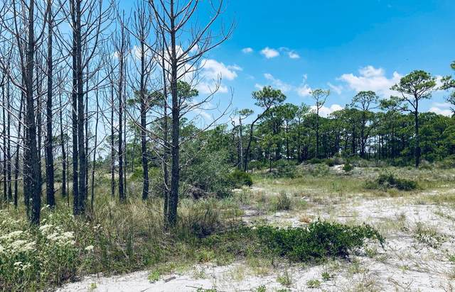 125 Boaters Rd, CARRABELLE, FL 32322 (MLS #305159) :: Berkshire Hathaway HomeServices Beach Properties of Florida