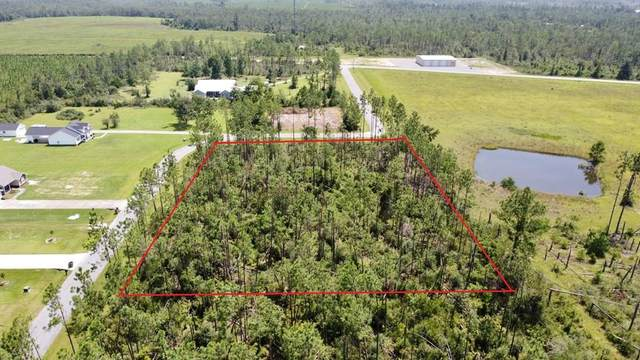 1&2 Edge Hill Rd, WEWAHITCHKA, FL 32465 (MLS #305348) :: The Naumann Group Real Estate, Coastal Office