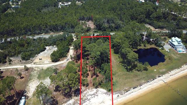1996 Marys Beach Ln, CARRABELLE, FL 32322 (MLS #305385) :: The Naumann Group Real Estate, Coastal Office
