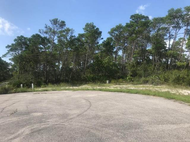 313 Hibiscus Ln, EASTPOINT, FL 32328 (MLS #305646) :: Anchor Realty Florida
