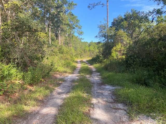 0 Cora Mae Rd, CARRABELLE, FL 32322 (MLS #306022) :: The Naumann Group Real Estate, Coastal Office