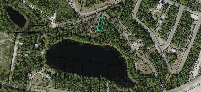 226 Lake Mckissack Ln, CARRABELLE, FL 32322 (MLS #306302) :: Anchor Realty Florida