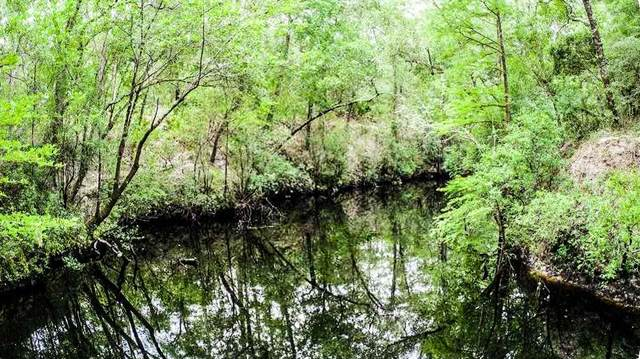 Lot 46 Mt Beasor Rd, SOPCHOPPY, FL 32358 (MLS #306551) :: Anchor Realty Florida