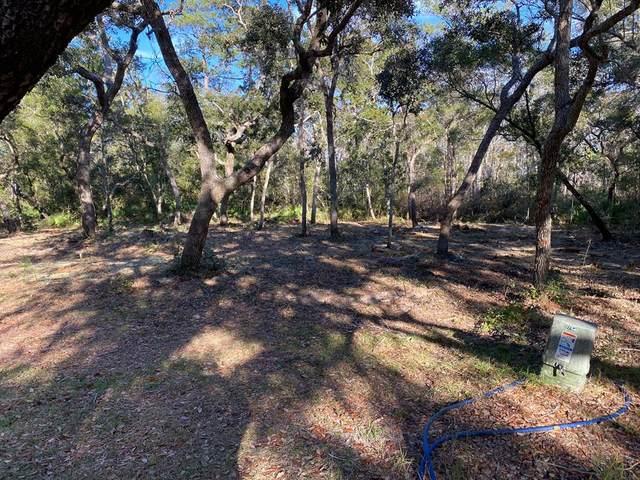 559 Walker Ln, APALACHICOLA, FL 32320 (MLS #306671) :: The Naumann Group Real Estate, Coastal Office