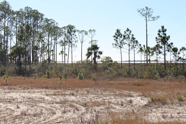18 Shallow Reed Dr Lot 18, PORT ST. JOE, FL 32456 (MLS #306731) :: The Naumann Group Real Estate, Coastal Office