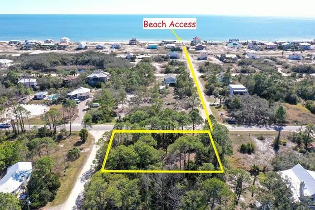 481 W Bayshore Dr, ST. GEORGE ISLAND, FL 32328 (MLS #306871) :: Anchor Realty Florida