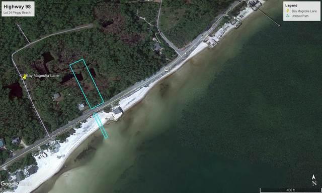 Lot 24 Hwy 98 Lot 24, CARRABELLE, FL 32323 (MLS #307177) :: The Naumann Group Real Estate, Coastal Office