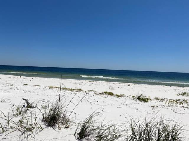 2-B Gulf Shore Dr, CARRABELLE, FL 32322 (MLS #307244) :: The Naumann Group Real Estate, Coastal Office