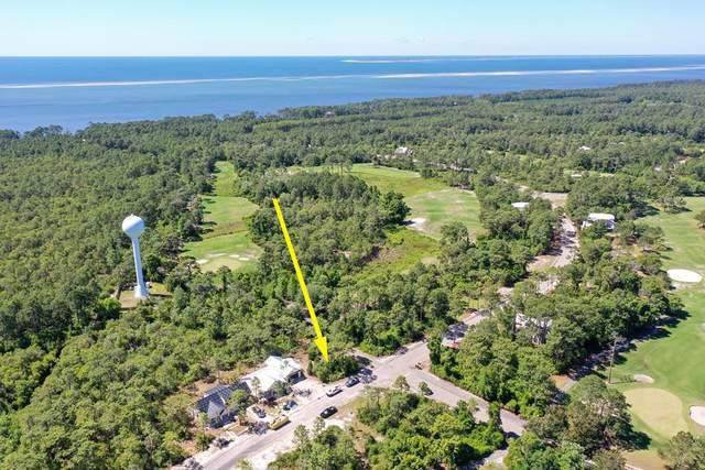 292 Royal Tern Way, CARRABELLE, FL 32323 (MLS #307727) :: The Naumann Group Real Estate, Coastal Office