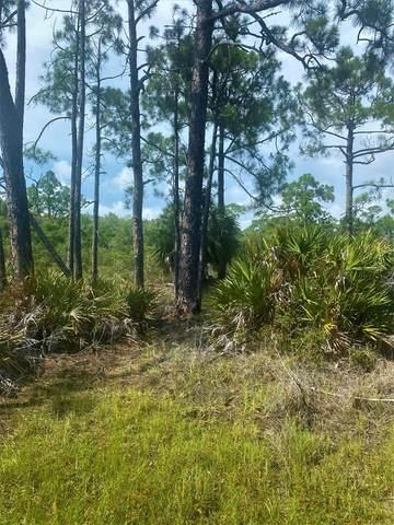17 Mccosh Mill Rd, CAPE SAN BLAS, FL 32456 (MLS #308141) :: Anchor Realty Florida