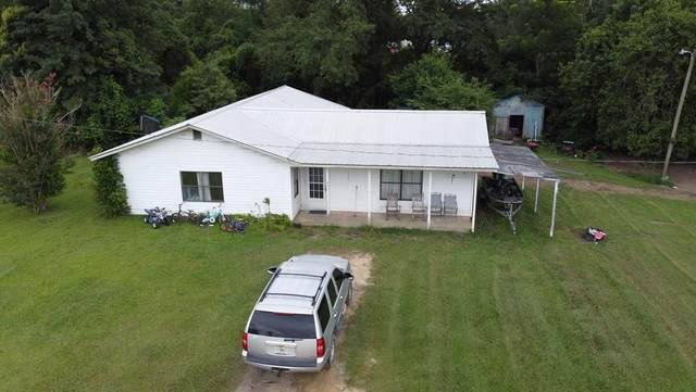 454 W River Rd, WEWAHITCHKA, FL 32465 (MLS #308565) :: Anchor Realty Florida