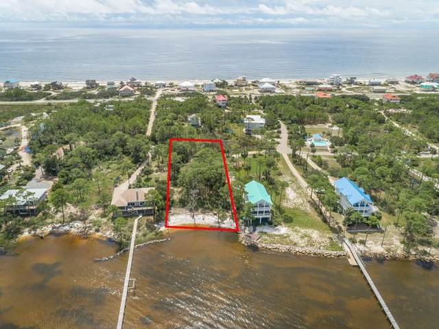 1469 E Gulf Beach Dr, ST. GEORGE ISLAND, FL 32328 (MLS #309021) :: Anchor Realty Florida