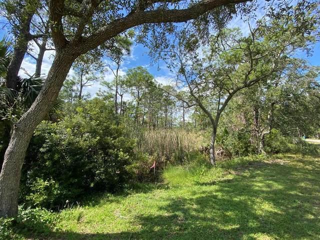 1287 Avocet Ln, ST. GEORGE ISLAND, FL 32328 (MLS #309138) :: Anchor Realty Florida