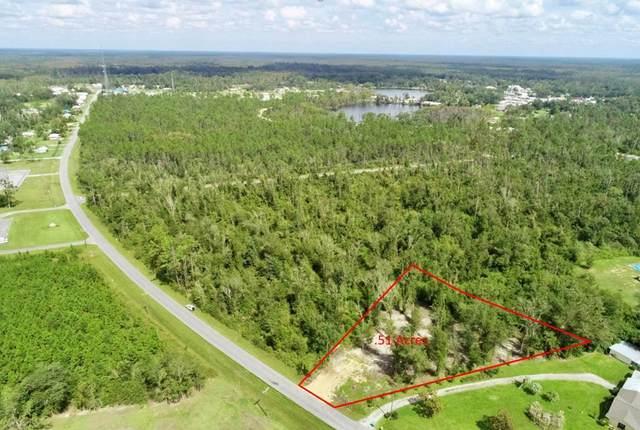 703 W River Rd, WEWAHITCHKA, FL 32465 (MLS #309148) :: Anchor Realty Florida