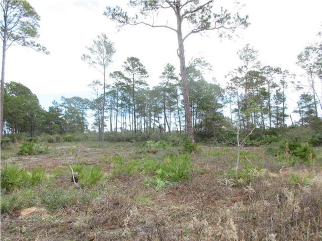 117 Woodill Rd, CARRABELLE, FL 32322 (MLS #260971) :: Coast Properties