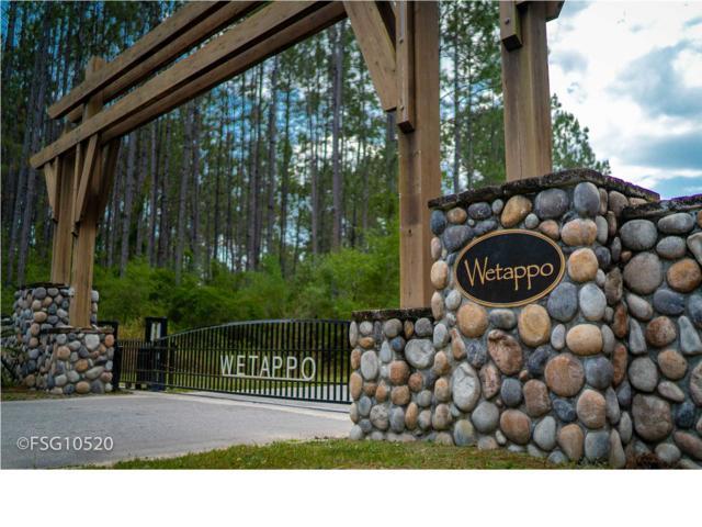 185 Wide Water Cir., WEWAHITCHKA, FL 32465 (MLS #261415) :: Coast Properties