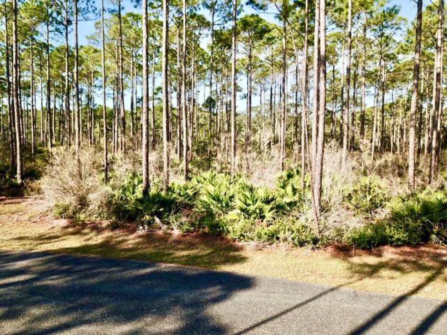 122 Treehouse Cir, CARRABELLE, FL 32323 (MLS #300924) :: Berkshire Hathaway HomeServices Beach Properties of Florida