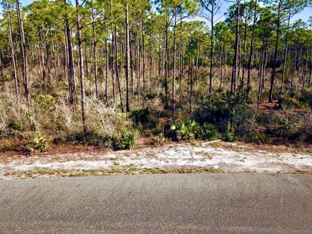 115 Treehouse Cir, CARRABELLE, FL 32323 (MLS #300927) :: Berkshire Hathaway HomeServices Beach Properties of Florida