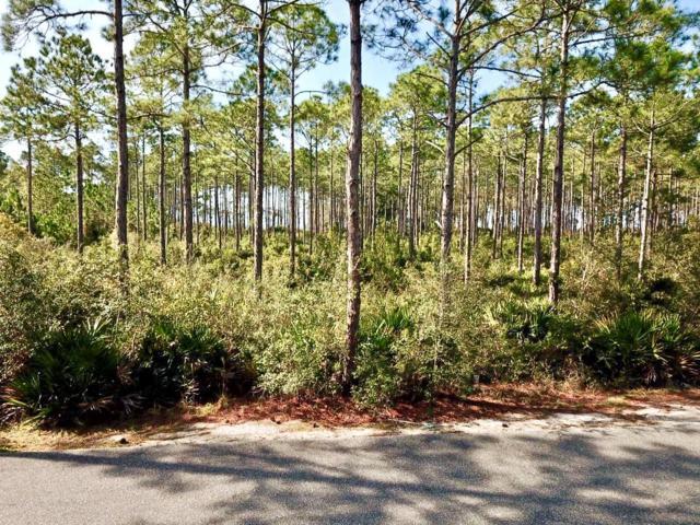 168 Lightning Bug Ln, CARRABELLE, FL 32323 (MLS #300929) :: Berkshire Hathaway HomeServices Beach Properties of Florida