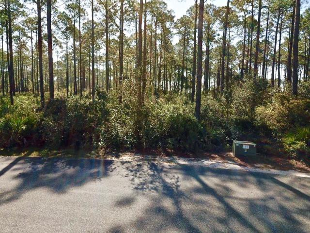 152 Lightning Bug Ln, CARRABELLE, FL 32323 (MLS #300930) :: The Naumann Group Real Estate, Coastal Office