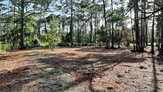 2976 Pristine Dr, CARRABELLE, FL 32322 (MLS #301000) :: Anchor Realty Florida