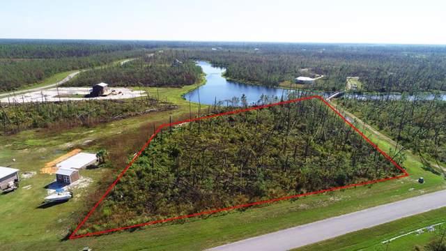 177 Wide Water Cir, WEWAHITCHKA, FL 32465 (MLS #303024) :: Coastal Realty Group