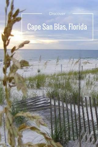 0 Seagrass Cir, PORT ST. JOE, FL 32456 (MLS #303195) :: The Naumann Group Real Estate, Coastal Office