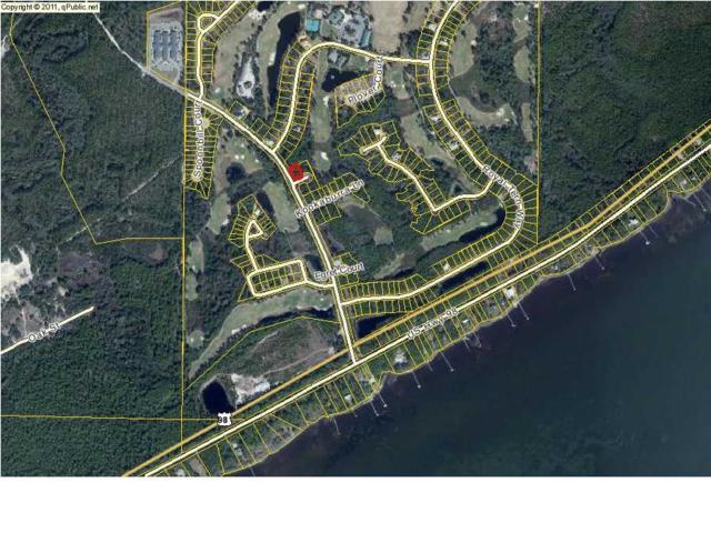 101 Green Heron Cir, CARRABELLE, FL 32322 (MLS #255479) :: Coast Properties