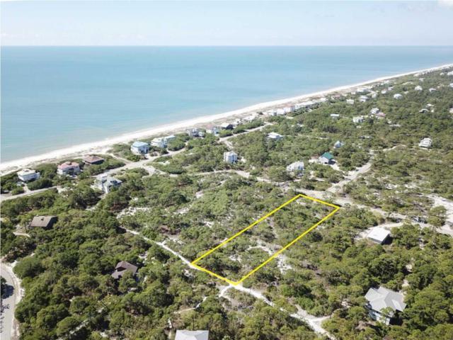 1316 Azalea Dr, ST. GEORGE ISLAND, FL 32328 (MLS #256571) :: CENTURY 21 Coast Properties