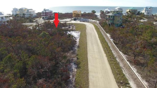 6 Monarch Beach Drive, CAPE SAN BLAS, FL 32456 (MLS #260089) :: CENTURY 21 Coast Properties