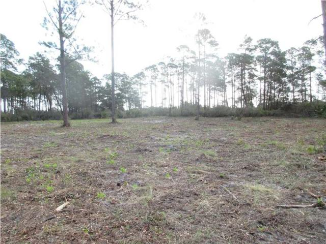 117 Woodill Rd, CARRABELLE, FL 32322 (MLS #260971) :: Coast Properties