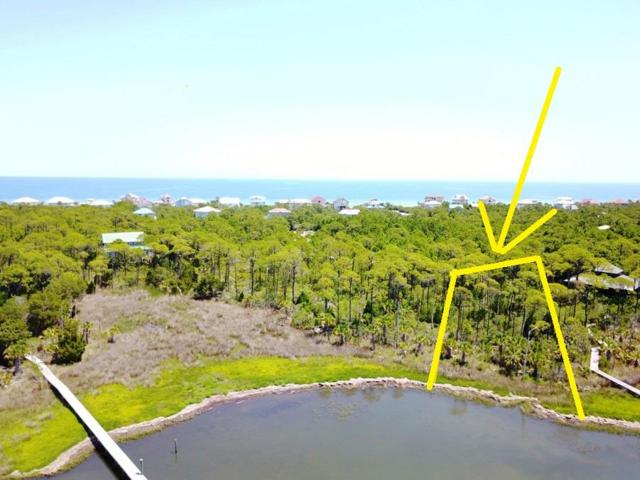 2015 Seminole Ln, ST. GEORGE ISLAND, FL 32328 (MLS #262164) :: CENTURY 21 Coast Properties