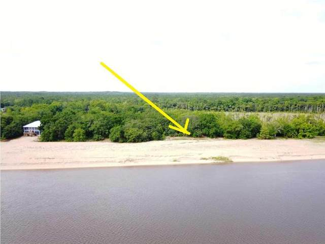 190 River Chase Rd, APALACHICOLA, FL 32320 (MLS #262309) :: Anchor Realty Florida
