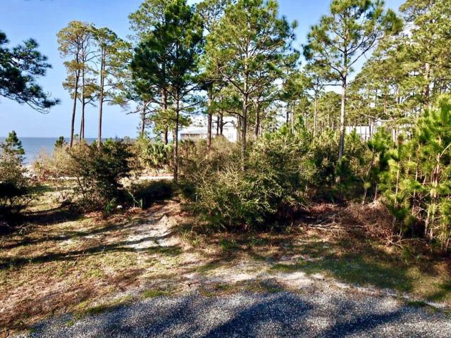 308 Gullwing Way, CARRABELLE, FL 32323 (MLS #300937) :: The Naumann Group Real Estate, Coastal Office