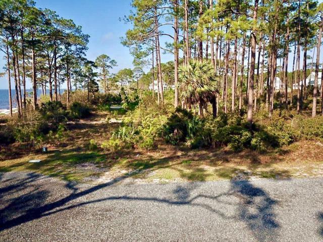 304 Hide-N-Seek Cir, CARRABELLE, FL 32323 (MLS #300939) :: Berkshire Hathaway HomeServices Beach Properties of Florida