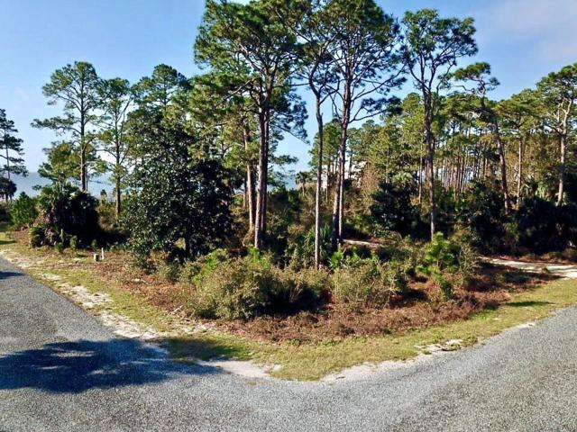 300 Gullwing Way, CARRABELLE, FL 32323 (MLS #300942) :: The Naumann Group Real Estate, Coastal Office