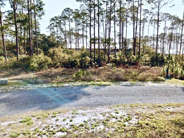 303 Trails End Way, CARRABELLE, FL 32323 (MLS #300943) :: The Naumann Group Real Estate, Coastal Office